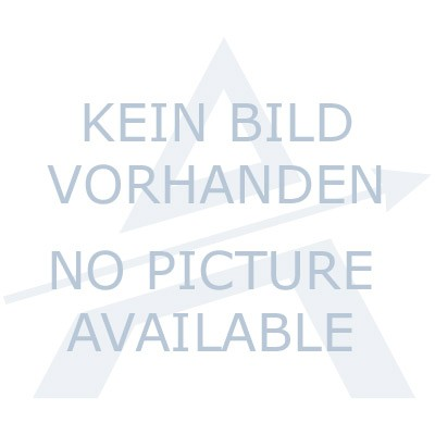 ALPINA Schriftzug, Folie Länge 300 mm in silber